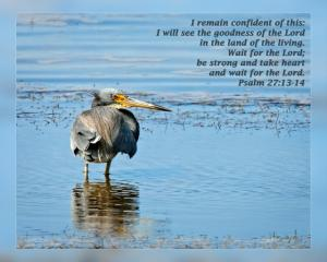 Daily Scripture Art Psalm 27 13-14