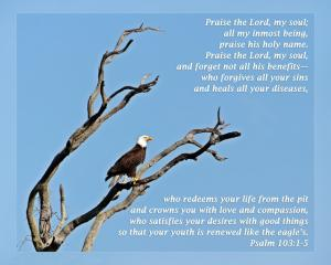 Daily Scripture Art Psalm 103 1-5